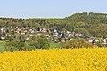Rapsfeld in Sachsen IMG 3223WI.jpg