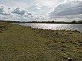 Recknitz valley, Ahrenshagen-Daskow (LRM 20200517 161415-hdr).jpg