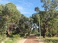 Reid bike path Hamersley 1.jpg