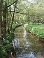 River Bourne by Bonsey's Common, Woking - geograph.org.uk - 168438.jpg