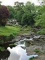 River Rhiw- Afon Riw - geograph.org.uk - 462589.jpg