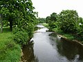 River Ribble south of Grindleton - geograph.org.uk - 455060.jpg