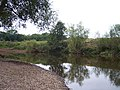 River Teme, near Bransford - geograph.org.uk - 54904.jpg
