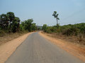 Road from Pandrangi to Boni in Visakhapatnam district.JPG