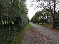 Road to Lodge Farm - geograph.org.uk - 585279.jpg