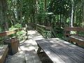 Robert Simpson Nature Trail 02.JPG