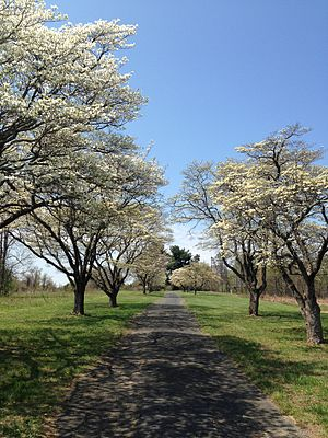 Elkridge, Maryland - A pathway in Rockburn Branch Park in West Elkridge.