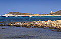 Rogliano-plage de Cala et tour d'Agnello.jpg