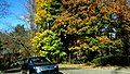 Ross Township, PA, USA - panoramio (2).jpg