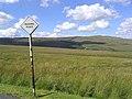 Rough grazing north of Bedda Hill - geograph.org.uk - 520607.jpg