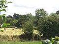 Round bales near Wayford Bridge - geograph.org.uk - 910490.jpg