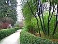 Royal Botanical Garden, Madrid - view 11.JPG