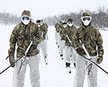 Royal Marine Reserves in Norway During Winter Training MOD 45156728.jpg