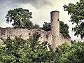Ruine Homburg2W.jpg