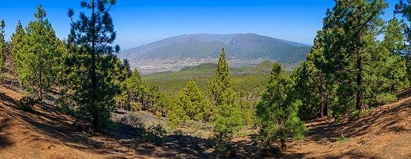 View from Ruta de los Volcaes at the western slope of the Pico Birigoyo on the the Llano del Jable, the Montaña Enrique and the Montaña Quemada, in the background the Caldera de Taburiente, La Palma