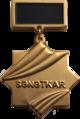 Sənətkar medalı.png
