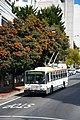 SanFran 14TrSF trolleybus 5592.jpg