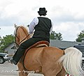 Sarah Spark riding Mnt Pleasure Horse stallion Goldfingers Star (2871422100).jpg