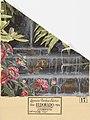 Scenic, El Dorado, 1904 (CH 18674671).jpg