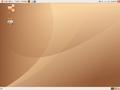 Screen ubuntu 10.04.png