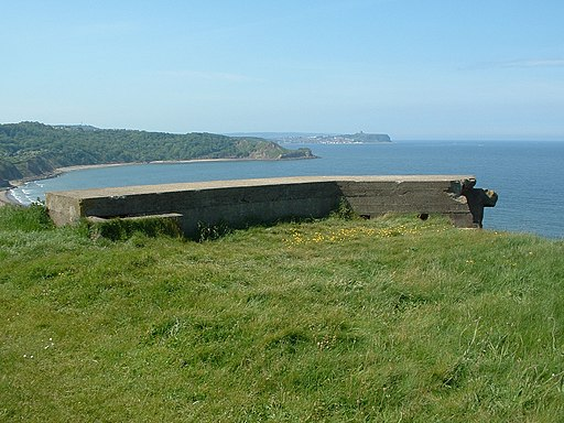 Section post (partial), Cayton Bay (rear)