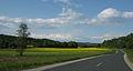 SeniskiPotok-dolina2.jpg