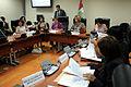Sesión de la comisión de la mujer (6874980050).jpg