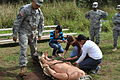 Sgt. 1st Class Jaime Melendez, Allergy and Immunization Clinic, Department of Medicine, Tripler Army Medical Center, and Medical Explorer Advisor, instructs explorers.jpg