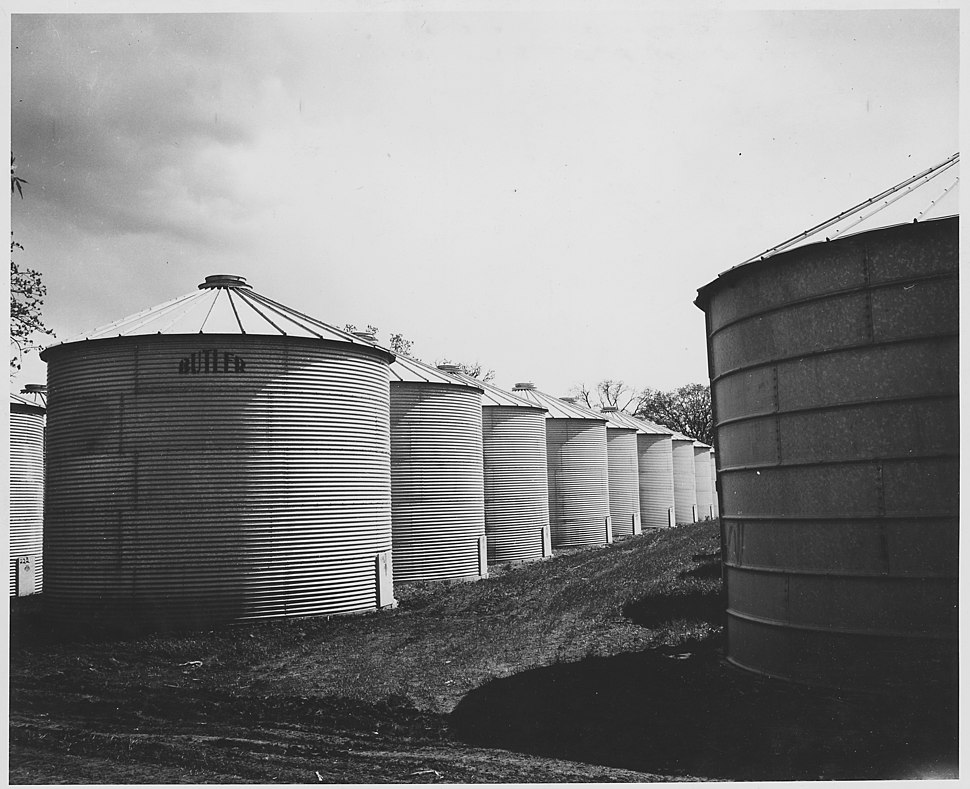Shelby County, Iowa. These granaries are located near Irwin Village, and much of the corn which is n . . . - NARA - 522350