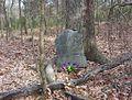 Shelby farms burial.jpg