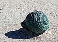 Shell sculpture Durrës Albania 2018 1.jpg