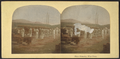 Shore batteries, West Point, from Robert N. Dennis collection of stereoscopic views.png