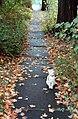 Sidewalk (438388698).jpg