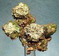 Silver-Copper-118928.jpg