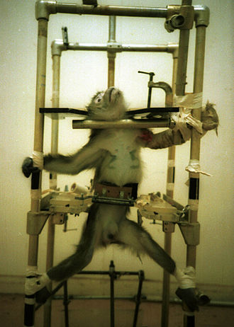 "People for the Ethical Treatment of Animals - PETA distributed images of the monkeys with the caption, ""This is vivisection. Don't let anyone tell you different."""