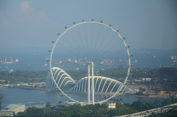 Singapore Flyer and Gardens by the Bay.JPG