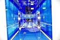 Sky100(Ank Kumar, Infosys Limited) 09.jpg