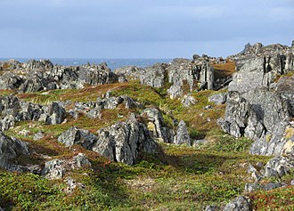 Gamvik - View of the Slettnes Nature Reserve