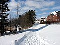 Snow Path (2321553583).jpg