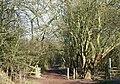 South Staffordshire Railway Walk, Lower Penn - geograph.org.uk - 667313.jpg