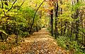 Spiral-ridge-trail-nc1.jpg
