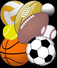 sports wiki