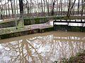 Stauwehr bei Hochwasser.jpg