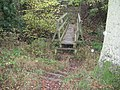 Steps cut into the banking approaching footbridge - geograph.org.uk - 1564281.jpg
