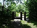 Stile - geograph.org.uk - 479698.jpg