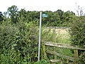 Stile and footpath - geograph.org.uk - 926814.jpg