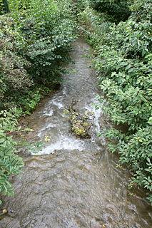 Stockacher Aach River in Germany