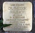 Stolperstein Falterweg 11 (Westend) Theodor Haubach.jpg