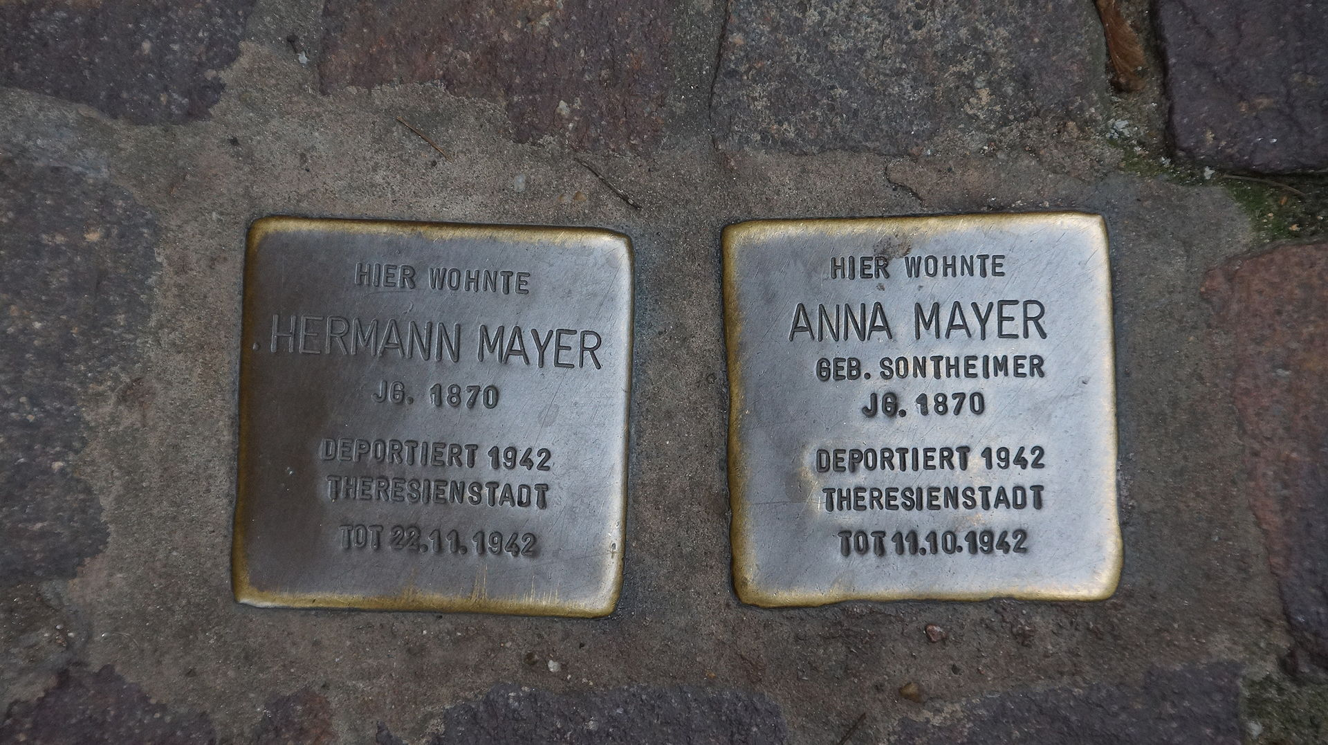 Stolperstein Seligenstadt Mayer Steinheimer Straße 4.JPG
