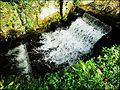 Stroud ... Frome fall. - Flickr - BazzaDaRambler.jpg